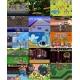 Kartidge z grami Dodatkowe gry na konsolę